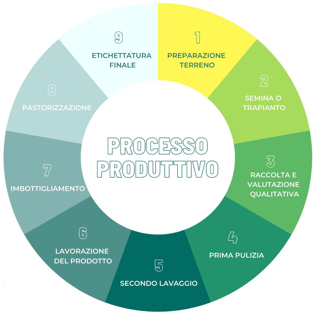 Gli step del processo produttivo